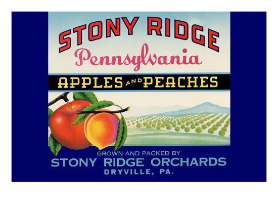 Stony Ridge Pennsylvania Apples and Peaches--Art Print