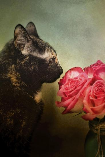 Stop and Smell the Flowers-Jai Johnson-Giclee Print