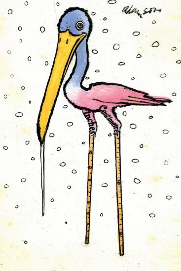 Stork with Calibrated Shanks, 1970s-George Adamson-Giclee Print