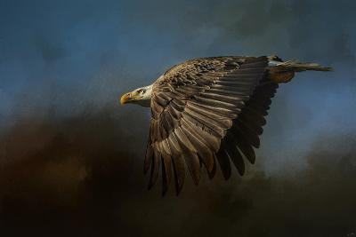 Storm Chaser Bald Eagle-Jai Johnson-Giclee Print
