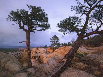 Storm over El Malpais National Monument, New Mexico, Usa-Tim Fitzharris-Photographic Print