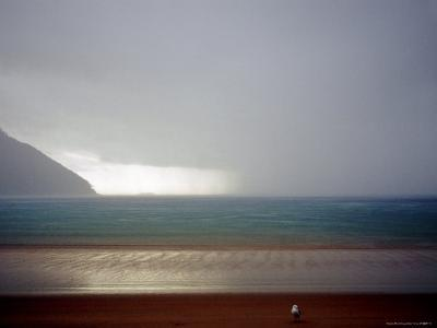 Storm over Sea at Sealers Cove, Wilsons Promontory National Park-Orien Harvey-Photographic Print