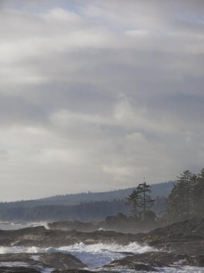 Stormy Day on Vancouver Island's West Coast-Taylor S^ Kennedy-Photographic Print