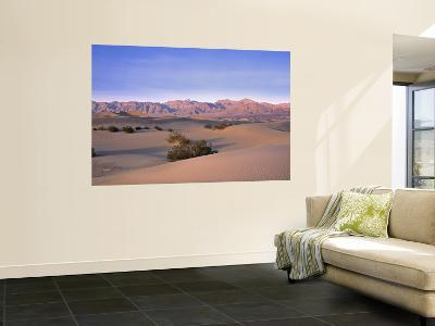 Stovepipe Wells, Death Valley, California, USA-Walter Bibikow-Wall Mural