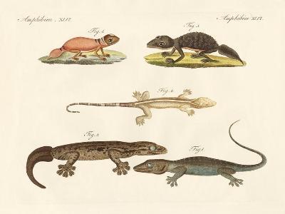 Strange Dinosaurs--Giclee Print