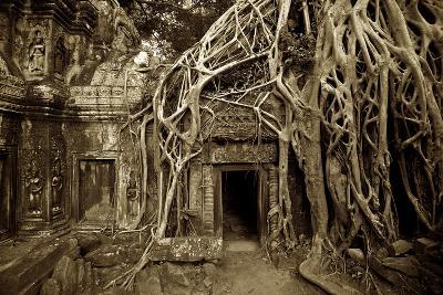 Strangler Fig Tree Roots Devour Temple Ruins at Ta Prohm Temple-Jim Richardson-Photographic Print
