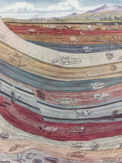 Strata of the Earth's Crust--Giclee Print