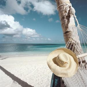 Straw Hat and Hammock at the Beach