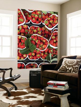 https://imgc.artprintimages.com/img/print/strawberries-for-sale-at-market-at-campo-de-fiori_u-l-pfh2h70.jpg?p=0