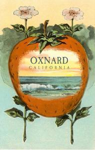 Strawberry with Ocean Scene Inside, Oxnard, California