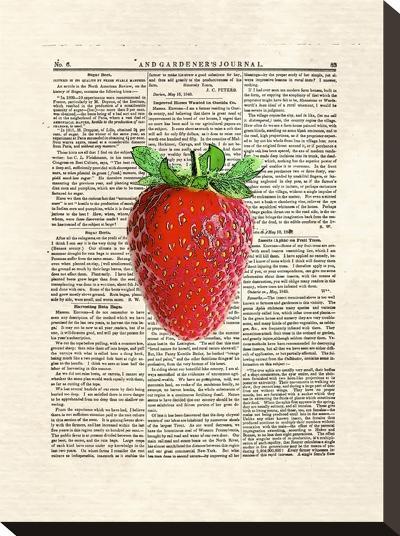 Strawberry-Matt Dinniman-Stretched Canvas Print