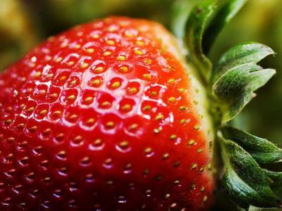 Strawberry-Ray Laskowitz-Photographic Print