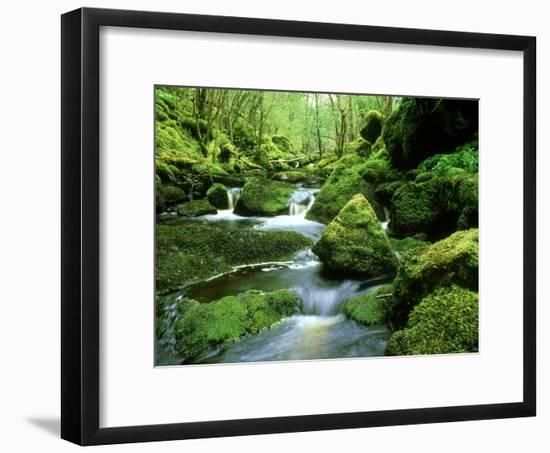Stream and Mossy Boulders, Scotland-Iain Sarjeant-Framed Photographic Print
