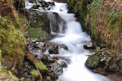 Stream Falls VII-Logan Thomas-Photographic Print