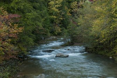 Stream Flowing During Autumn-Karen Kasmauski-Photographic Print