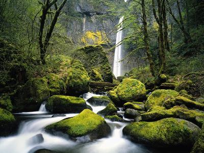 Stream Flowing over Mossy Rocks-Craig Tuttle-Photographic Print