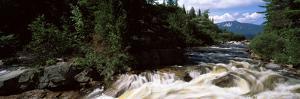 Stream Flowing Through a Forest, Little Niagara Falls, Nesowadnehunk Stream, Baxter State Park