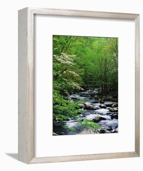 Stream in Lush Forest-Ron Watts-Framed Premium Photographic Print