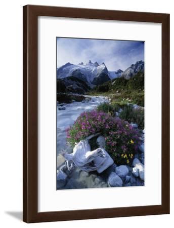 Stream Rapids-David Nunuk-Framed Photographic Print