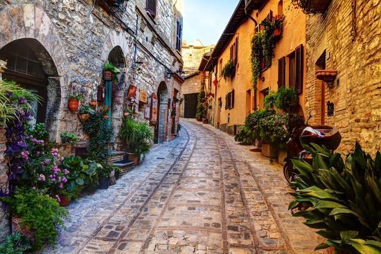 Street in Spello, Italy-Terry Eggers-Photographic Print