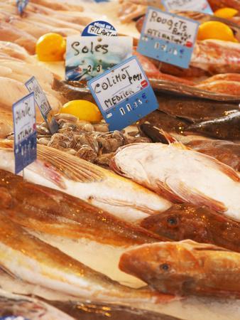 https://imgc.artprintimages.com/img/print/street-market-merchant-s-stall-with-fish-sanary-var-cote-d-azur-france_u-l-p24pqe0.jpg?p=0