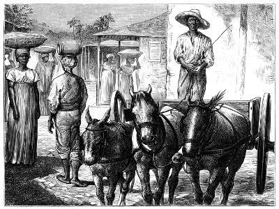 Street Scene, Haiti, 19th Century-T Wust-Giclee Print