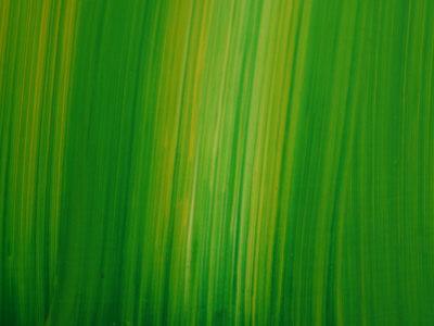https://imgc.artprintimages.com/img/print/striated-green-background_u-l-q10x79l0.jpg?p=0