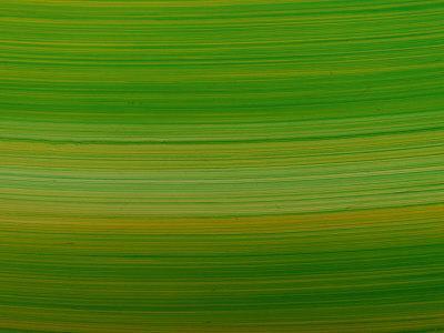 https://imgc.artprintimages.com/img/print/striated-green-background_u-l-q10x79q0.jpg?p=0
