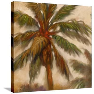 Strickly Palms 02-Kurt Novak-Stretched Canvas Print