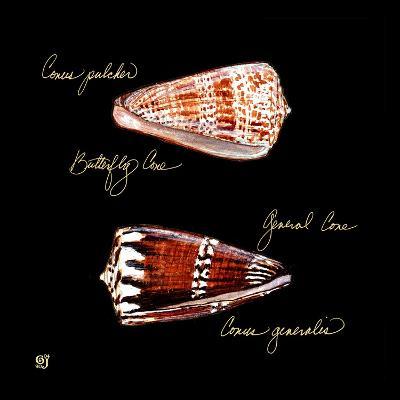Striking Shells III-Ginny Joyner-Art Print