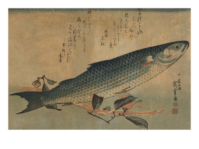 Striped Mullet-Ando Hiroshige-Art Print