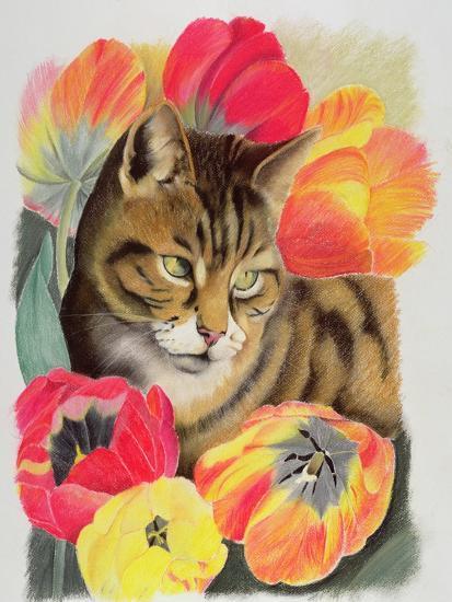 Stripy and Tulip-Anne Robinson-Giclee Print