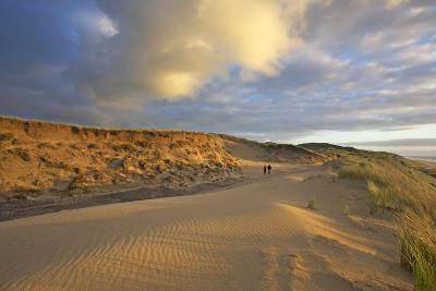 Stroller in the Costal Cliffs at the 'Rotes Kliff' on the Island of Sylt in the Evening Light-Uwe Steffens-Photographic Print