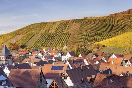 Strumpfelbach with Vineyards in Autumn, Baden Wurttemberg, Germany-Markus Lange-Photographic Print