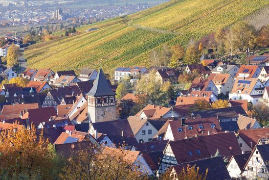 Strumpfelbach with Vineyards in Autumn, Baden Wurttemberg, Germany-Markus Lange-Photographic Print