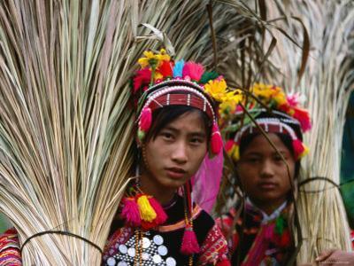 Two Ethnic Ha Nhi Co Cho Girls Carrying Rice Stalks, Muong Tei, Lai Chau, Vietnam