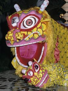 Chinese Dragon Dance at Chinese New Year Celebrations, Vietnam, Indochina, Southeast Asia, Asia by Stuart Black