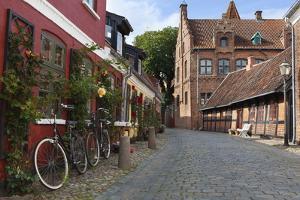 Cobblestone Alley in the Old Town, Ribe, Jutland, Denmark, Scandinavia, Europe by Stuart Black