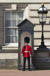 Grenadier Guardsman Outside Buckingham Palace, London, England, United Kingdom, Europe by Stuart Black