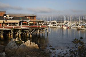 Monterey Docks and Fisherman's Wharf Restaurants by Stuart Black