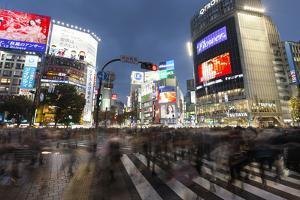 Neon Signs and Pedestrian Crossing (The Scramble) at Night, Shibuya Station, Shibuya, Tokyo, Japan by Stuart Black