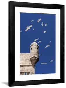 Seagulls Flying Above Turret of the Old Fort by Stuart Black
