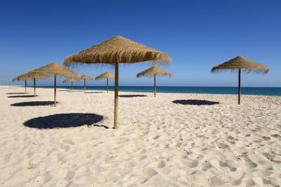 Straw umbrellas on empty white sand beach with clear sea behind, Ilha do Farol, Culatra Barrier Isl by Stuart Black