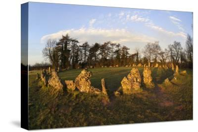The Rollright Stones, a Bronze Age Stone Circle, Chipping Norton, Oxfordshire, Cotswolds, England