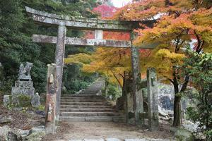 Torii Gate and Steps of Daisho-In Temple in Autumn, Miyajima Island, Western Honshu, Japan by Stuart Black