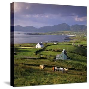 View over Allihies and Ballydonegan Bay, Beara Peninsula, County Cork, Munster, Republic of Ireland by Stuart Black