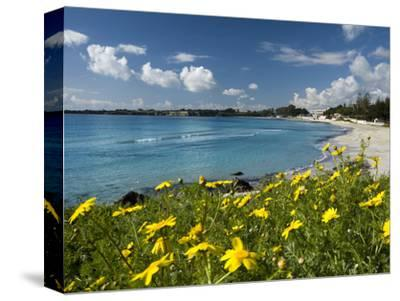 View over Beach in Spring, Fontane Bianche, Near Siracusa, Sicily, Italy, Mediterranean, Europe