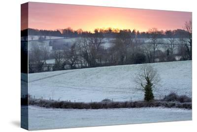 Winter Trees and Fields in Dawn Frost, Stow-On-The-Wold, Gloucestershire, Cotswolds, England, UK