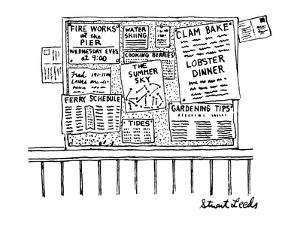 Bulletin board with various leaflets pinned up on it; they say 'The Summer? - New Yorker Cartoon by Stuart Leeds