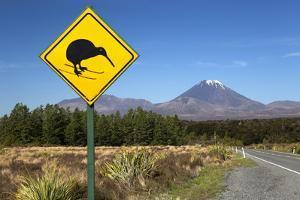 Mount Ngauruhoe with Kiwi Crossing Sign by Stuart